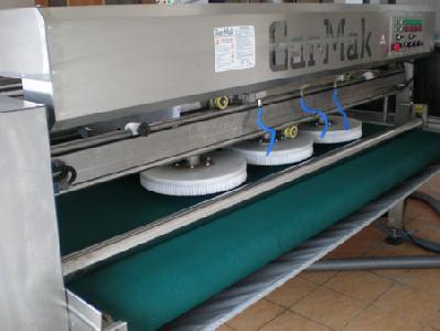 washing carpet machine rent