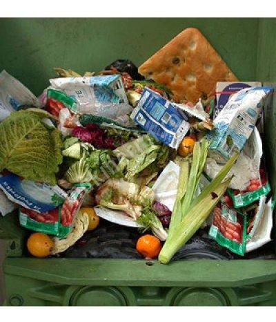 Katı Atık Parçalama Üniteleri   Organik Çöp Parçalama Ekipmanları