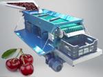 Kiraz Boylama Makinası(2.tip)