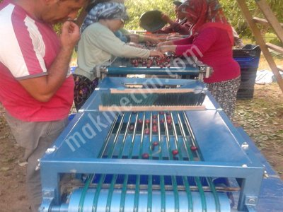 Cherry Sorting Machine