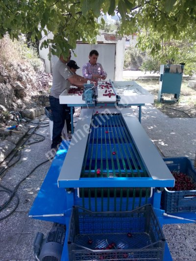 CHERRY SORTİNG MACHINE
