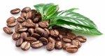 Kahve Öğütme Değirmeni Rbt2200