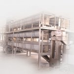 Sesame Processing Line And Machinery