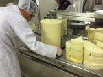 Tulum Peyniri  Makinası