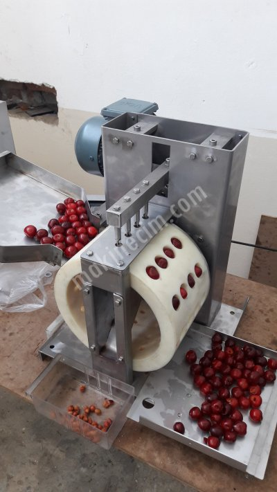 Cherry Pitter Machine 50Kg/h