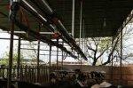 1X5 Kilit Arkası Süt Sağım Sistemi - Peşin Yada Kredi Kartına Tek Çekim- Kdv Hariç