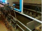Sezer Süt Sağım Ünitesi 24 Lü Otomatik Sağım Ünitesi Çift Vakumlu Sıfır Ayarında